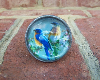 Two Birds Sitting on a Branch Metal and Glass Knob/Drawer Pull