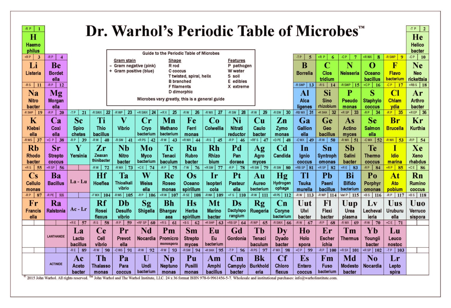 Dr. Warhol\'s Periodic Table of Microbes | Etsy