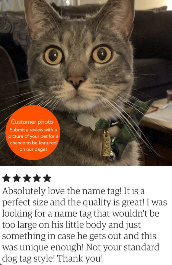 pet tag id tag engraved personalised house tag styles with 10 colours front and back dog cat mouse free ring etsy id tag name address gift