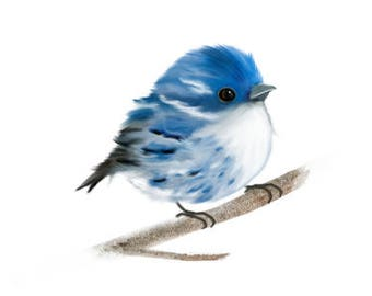 Bird prints, Cerulean Wren bird,  bird wall print, bird wall art, bird art, bird painting, bird home decor, bird poster, bird gifts