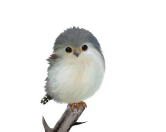 Bird painting, bird prints, baby bird, bird nursery decor, bird nursery, baby pygmy falcon