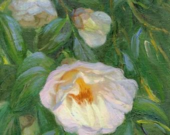 "White Camelia Oil Painting, 9""x12"""