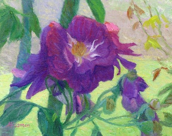 Purple Roses in the Shade