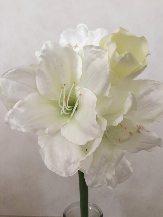 White amaryllis silk flower stem artificial faux silk etsy image 0 mightylinksfo