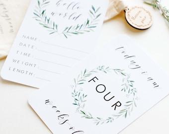 Evergreen Baby Milestone Cards - Unisex Gender Neutral - Newborn Baby Keepsake - Baby Shower Gift - My First Year - Baby Boy - Baby Girl