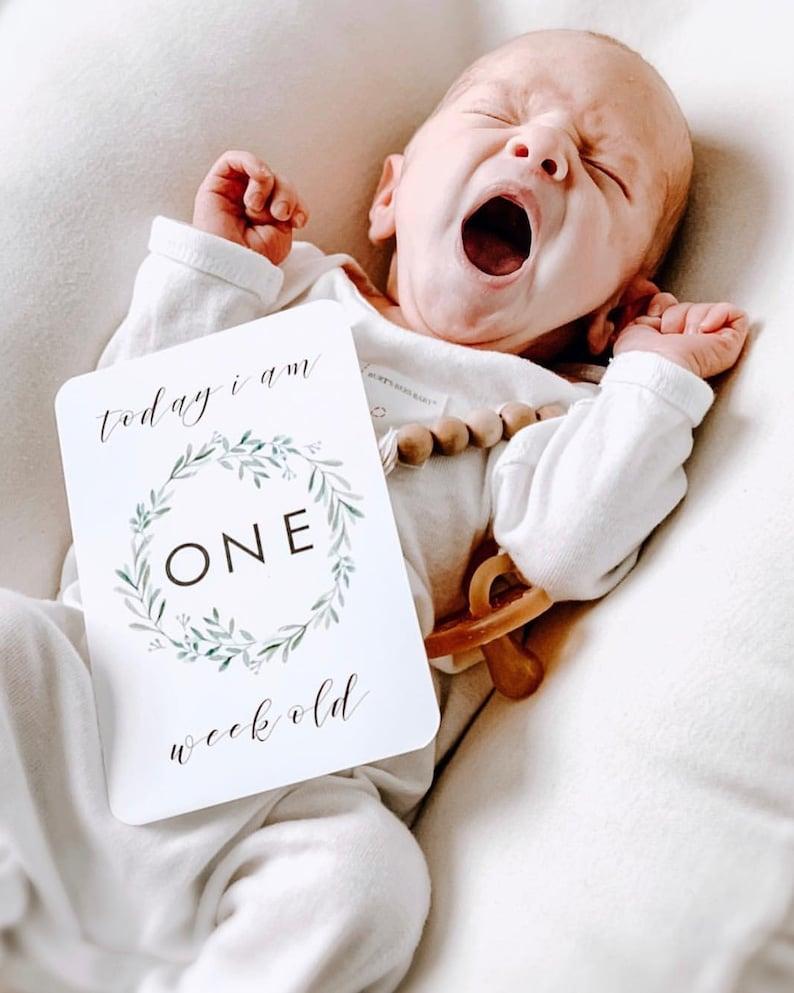 Evergreen Baby Milestone Cards Unisex Gender Neutral image 7