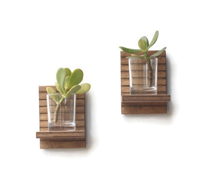 Succulent Planter Wood Shelves