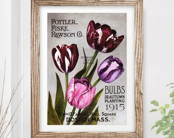 VINTAGE FLOWERS Art Print / Poster Purple Tulips Floral Nature Plants Kitchen Garden Victorian Home Horticulture A4 A3 A2 (10 Size Options)