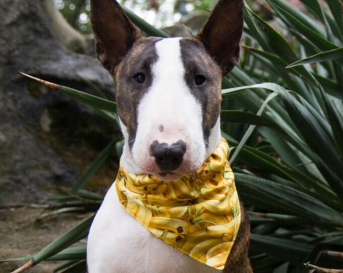 Bandana pour chien - Bananes