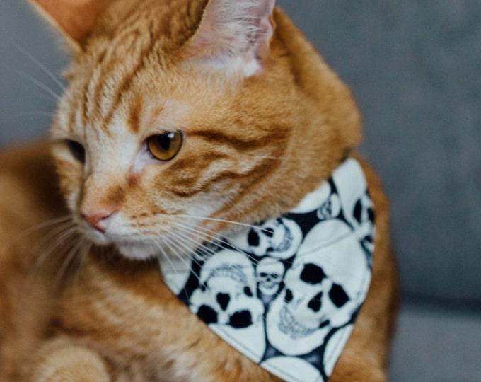 Bandana pour chat - Têtes de mort phosphorescentes