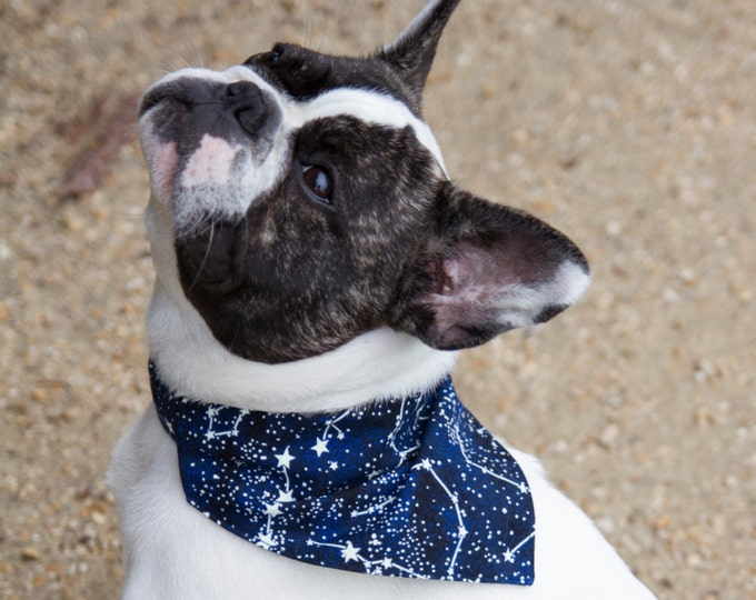 Glowing stars bandana - glows in the dark - to be slipped on a  dog collar