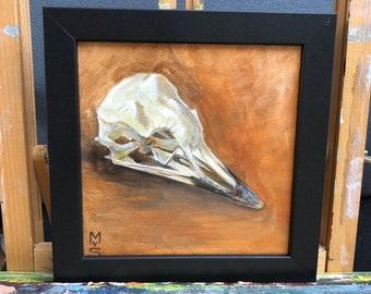 Skull painting seagull for wunderkammer plein air made.