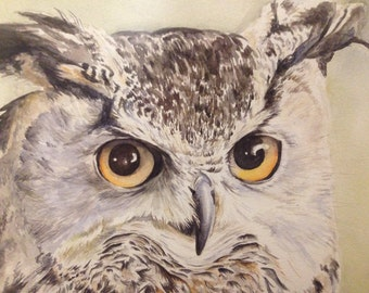Stern Long-eared owl, original watercolour painting, 40x60 with frame, boho, wunderkammer article