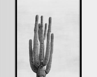 Cactus print, South Western, Mexican, Modern art, Wall decor, Digital art, Printable, Digital poster Instant Download 8x10, 11x14, 16x20