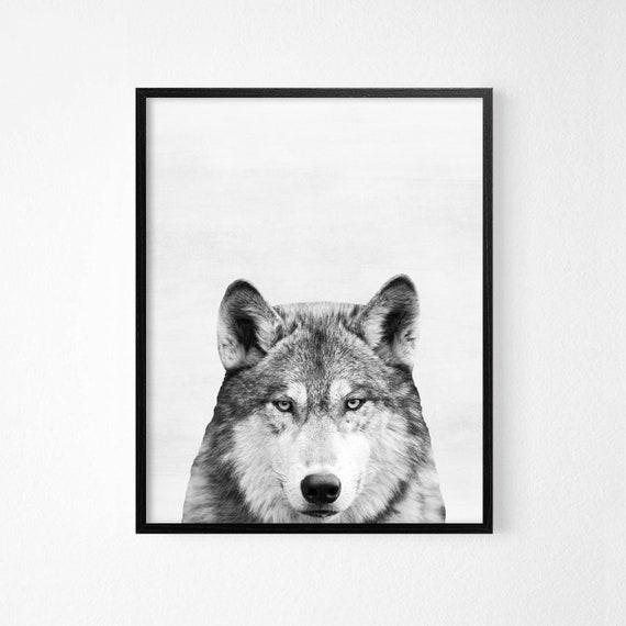 16x20 Wall Decor Grey and Black Wolf in Snow Wildlife Animal Room Art Print