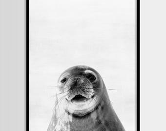 Fur seal print, Nursery decor, Animal art, Wall Art, Minimalist, Digital art, Printable, Digital print Instant Download 8x10, 11x14, 16x20