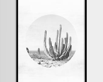 Cactus print, South Western, Cactus decor, Mexican, Modern minimal, Wall art, Digital art, Printable, Digital poster Instant Download 16x20
