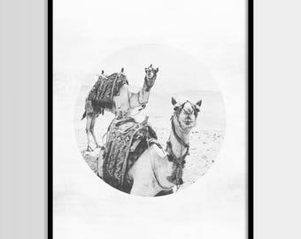 Camel print, South Western, Desert decor, Mexican, Modern minimal, Wall art, Digital art, Printable, Digital poster Instant Download 16x20