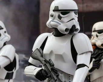 Delightful Stormtrooper Armor | RAW Or FINISHED 3D KIT | Star Wars Rogue One | Custom  Fit | Handmade