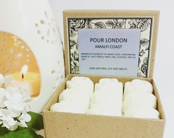 Amalfi Coast Scented Soy Wax Melts x 9