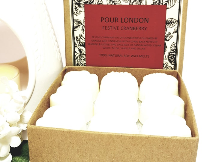 Festive Cranberry  Scented Soy Wax Melts x 9