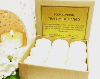 Thai Lime and Mango Scented Soy Wax Melts x 9
