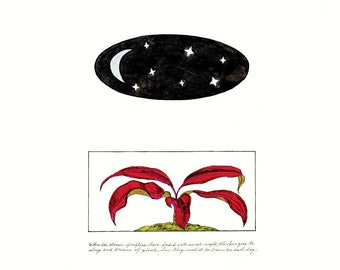 Vessels & Two Paths Series Prints
