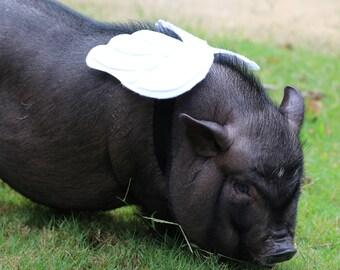 27fa949f1652a Mini pig clothes | Etsy