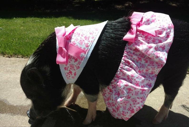 8da869be40bd1 Pink Piggies! Mini Pig Clothes, Pet Tutu, Pig Tutu