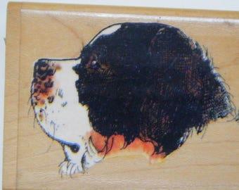 Saint Bernard profile rubber stamp