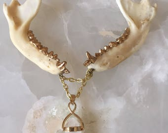 Double Jawbone and Crystal Necklace