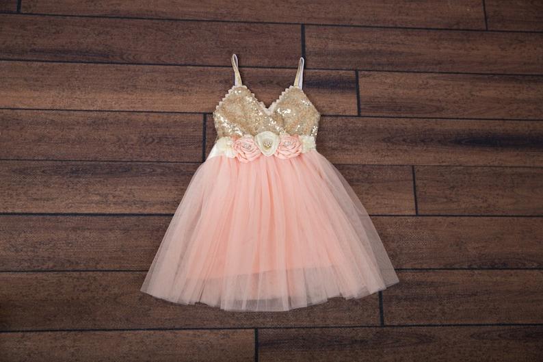 77da44bf4a Light Pink Tulle Flower Girl Dress Pale Pink Ball Gown Gold