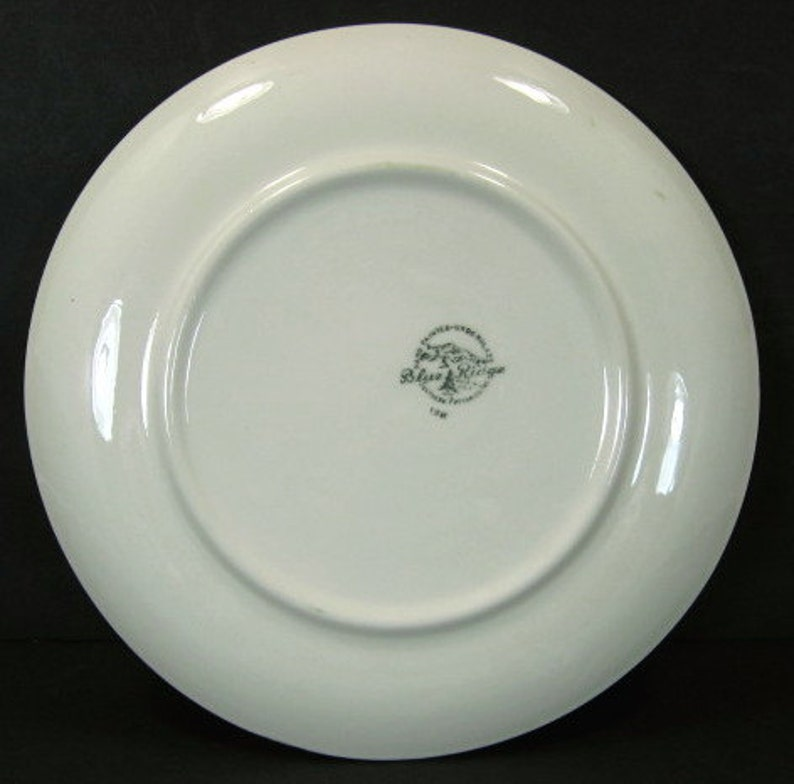 Blue Ridge Southern Pottery Baltic Ivy Dinner Plate 9.5in