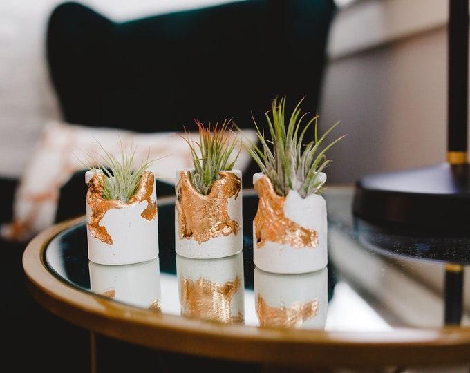Featured listing image: Made to Order Mini Concrete Gold Filigree Air Plant Holder, Modern Metallic planter,Indoor Planter, Desk planter