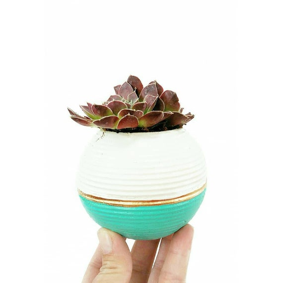 Modern Planter/Concrete Planter/Cactus Planter/Modern Decor/Succulent Planter/Indoor Planter/Office Planter/Sphere planter/orb planter