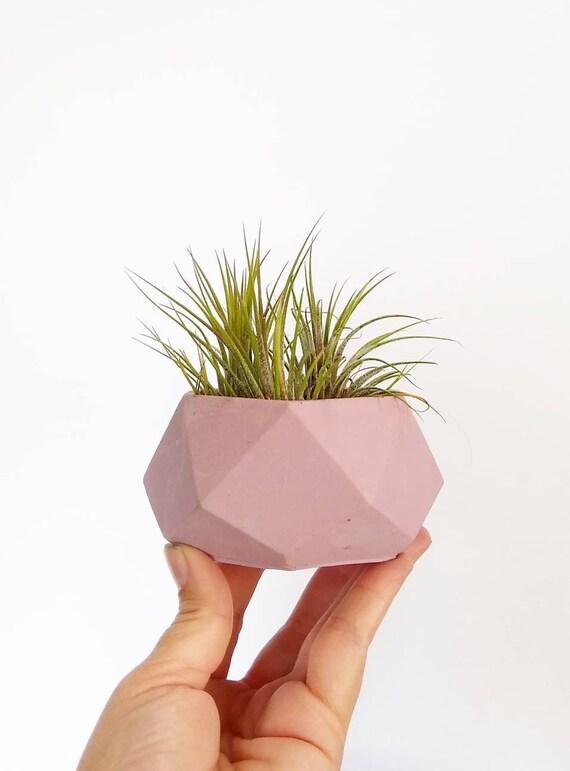Geometric Planter/Air Plant Holder/Desk Planter/Geometric decor/New Home Gift/Housewarming Gift/Succulent Planter/Modern Planter/Minimalist