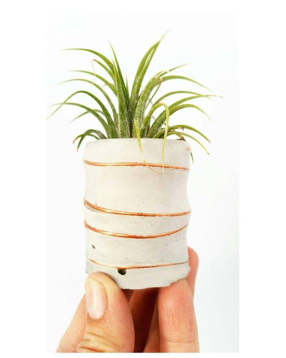 Concrete Planter/Mini Air Plant Holder/Modern Planter/Office Planter/Succulent Planter/ Indoor Planter/Desk planter/Dorm decor/Minimalist