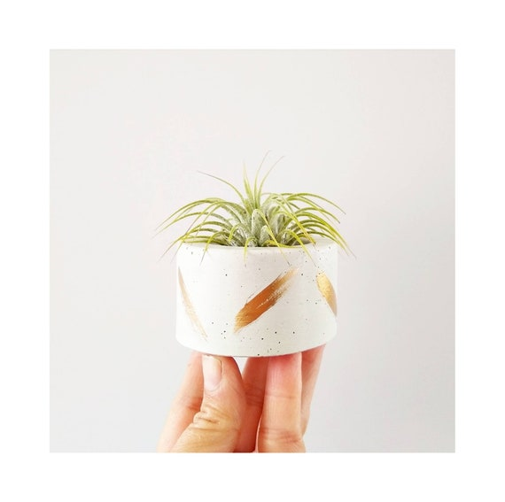 White & Gold Concrete Vessel/Modern Air Plant Holder/Tea light Holder/Office Planter/Indoor Planter/Dorm decor/Minimalist/Ring dish