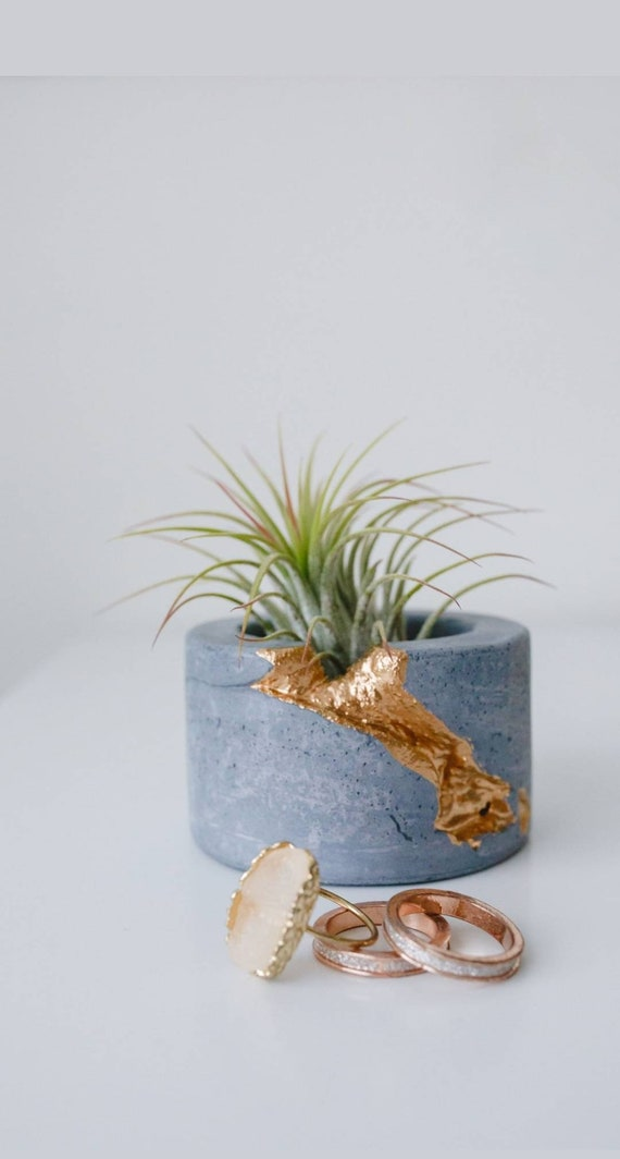 Concrete Air Plant Holder,Votive Vessel, Modern planter, Cactus Planter,Air Plant,Ring Dish,Desk Planter Metallic vessel, Mini Planter