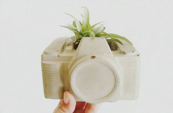 Camera Planter/Concrete Planter/Photographer Gift/Cactus Planter/Camera Decor/Vintage Camera/Retro Decor/Photographer/Photographer Lover