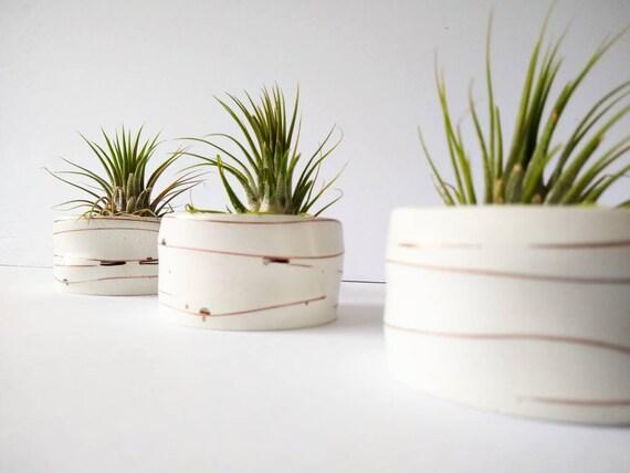 White Concrete Air Plant Holder,Modern planter,Cactus Planter,Air Plant, Ring Dish,Desk Planter, candle holder,Plant lover, Mini Planter