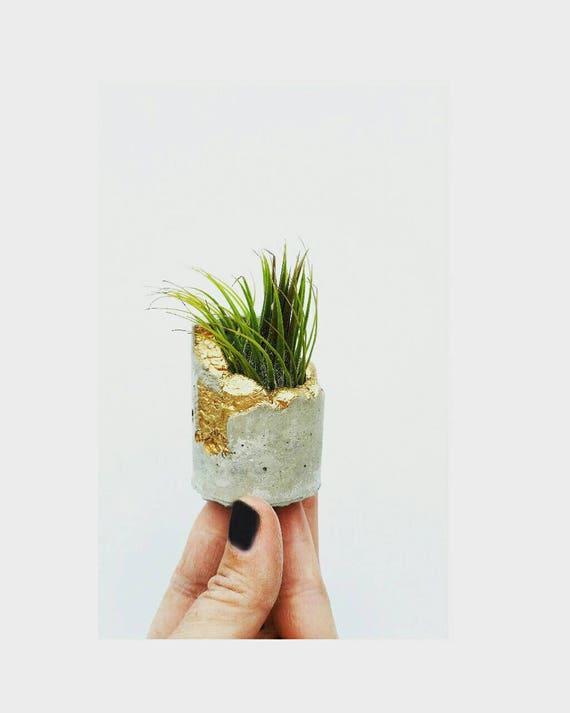 Concrete Gold Leafing Air Planter,Modern Metallic planter, Cactus Planter,Succulent Planter,Indoor Planter, Desk planter,Concrete Home Decor