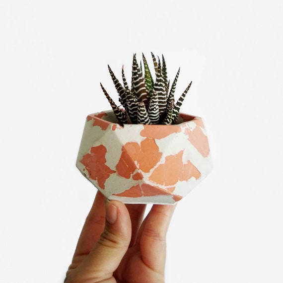 Peach & white Geometric Planter/Air Plant Holder/Desk Planter/home decor/New Home Gift/Housewarming Gift/Succulent Planter/Modern Planter/