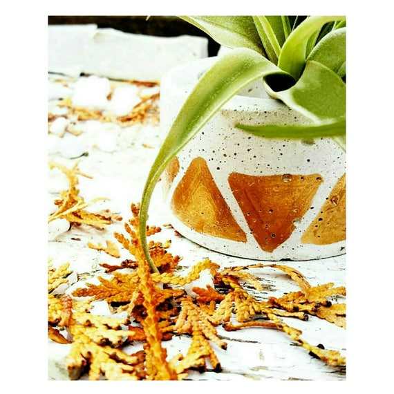 White Concrete/Concrete Planter/Candle Holder/Ring Holder/Air Plant Holder/Air Plant/Concrete Decor/Tea light holder/Industrial decor