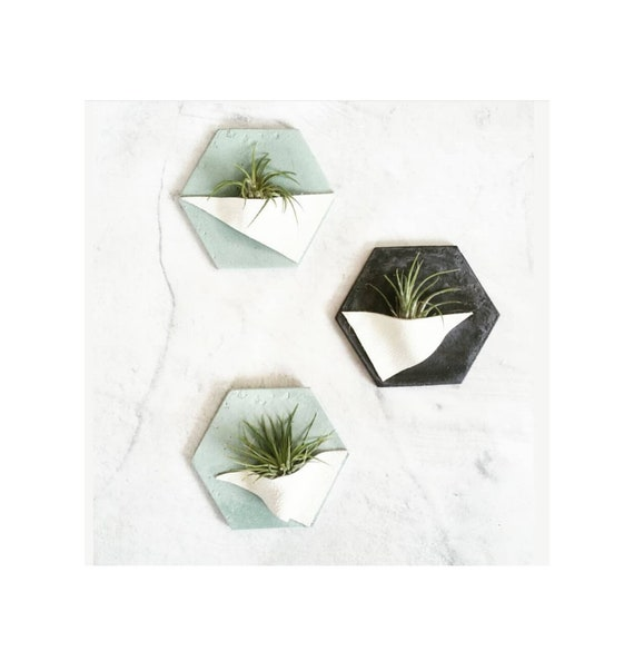 Hexagon Air Plant Holder/Air Plant Magnet/concrete Wall Planter/Geometric decor/Housewarming Gift/Industrial/Minimalist/Modern Decor/leather