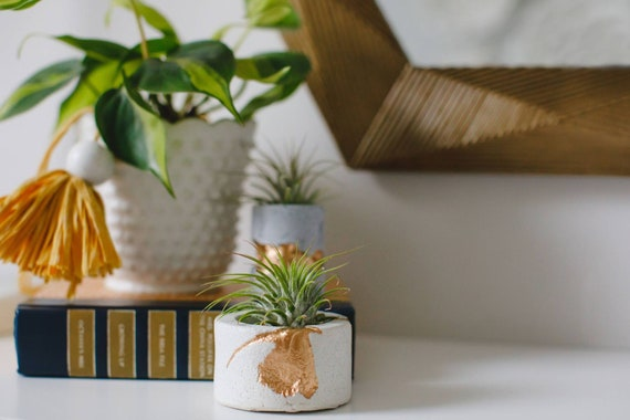 White Concrete Air Plant Holder,Votive Vessel, Modern planter, Cactus Planter,Air Plant,Ring Dish,Desk Planter Metallic vessel, Mini Planter