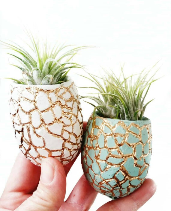 Concrete Planter/Modern Planter/Mini Planter/Pineapple Planter/Indoor Planter/Succulent planter/Pineapple decor/pineapple/Air plant/planter