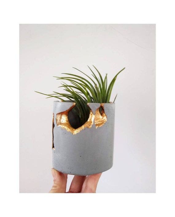 Gray Concrete and Gold Gilding Indoor Planter