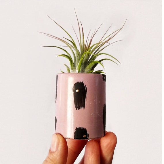 Pink Concrete Planter/Modern Planter/Air Plant Holder/Office Planter/Succulent Planter/ Indoor Planter/Mod Pink/Midcentury Modern/apartment