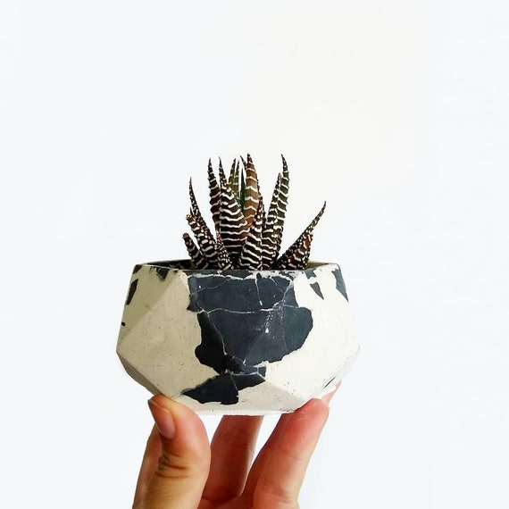 Gray & white Geometric Planter/Air Plant Holder/Desk Planter/home decor/New Home Gift/Housewarming Gift/Succulent Planter/Modern Planter/
